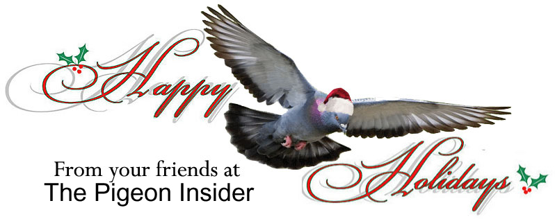 Happy Holidays from The Pigeon Insider