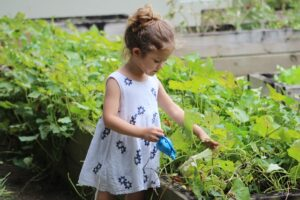 gardening with kids while working from home